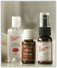 Thieves Oil / Spray / Purifier